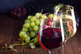 best wine making kits