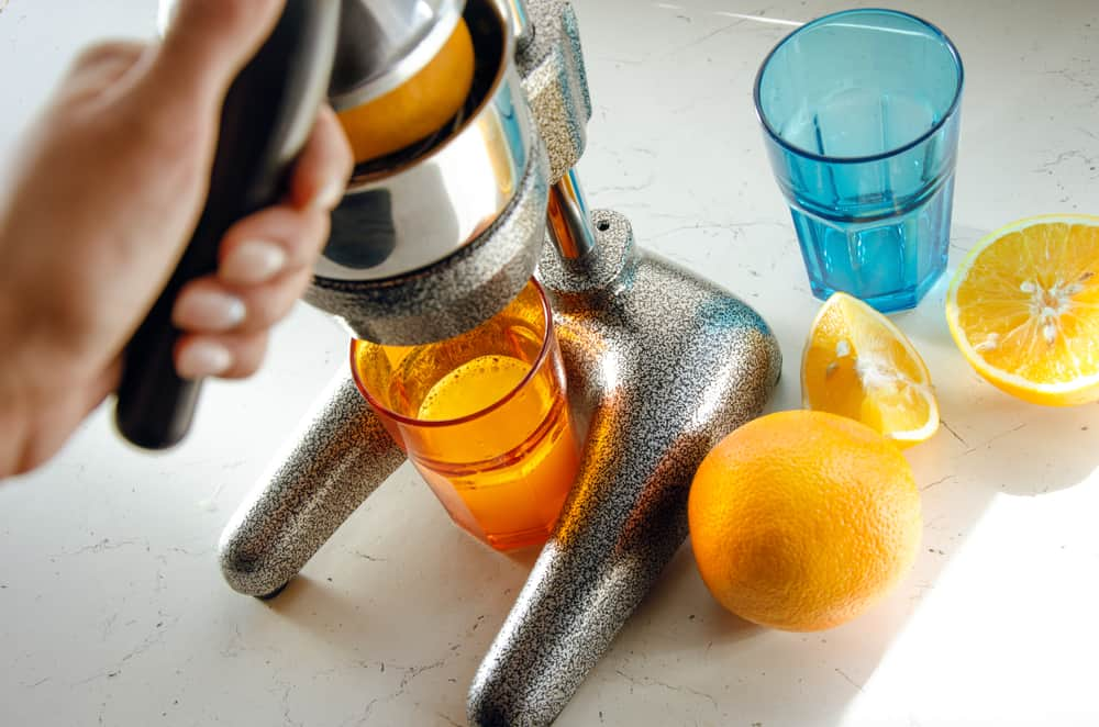 Best Manual Juicer 2