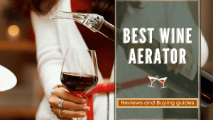best wine aerator