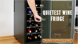 Quietest Wine Fridge