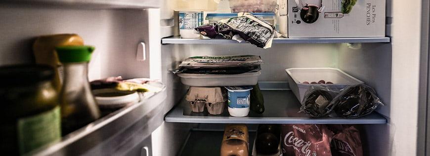 Best Propane Refrigerator